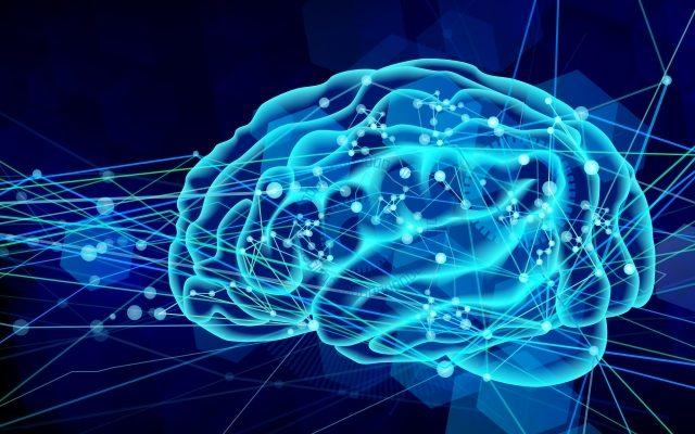 社交ダンスでの脳と体の動き
